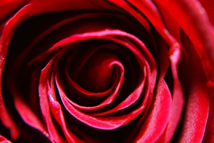 Serata a Tema Rosso Passione